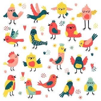 Selezione colorata di illustrazione di uccelli