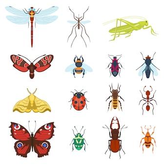 Icone variopinte degli insetti di vista superiore isolate