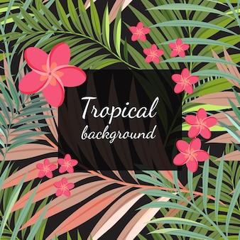 Sfondo di fiori tropicali colorati, piante e foglie.