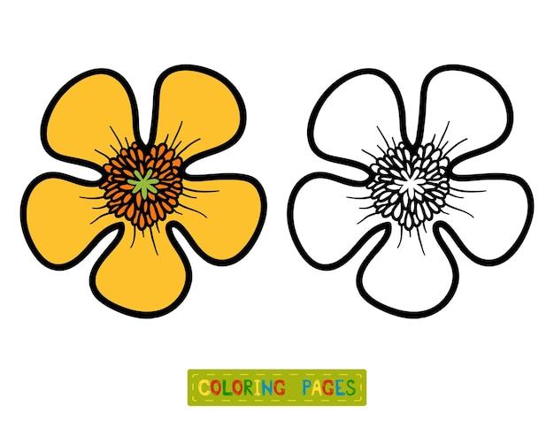 Libro da colorare per bambini, fiore buttercup