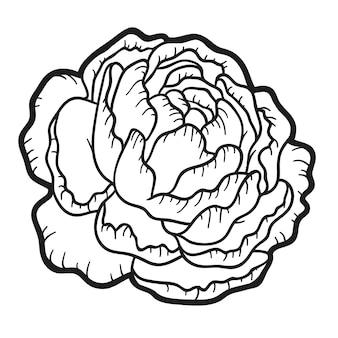 Libro da colorare per bambini, fiore di peonia