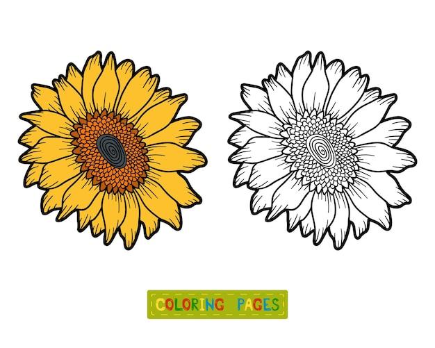 Libro da colorare per bambini, fiore di girasole