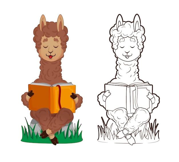 Libro da colorare, lama carino sta leggendo sdraiato, appoggiato su una pila di libri. vector, illustrazione in stile cartone animato, line art, flat