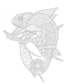 Pagina del libro da colorare con camaleonte sul ramo