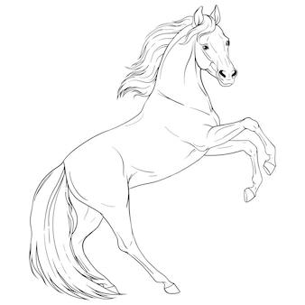 Libro da colorare con il cavallo. contorno in bianco e nero. illustrazione vettoriale isolato.