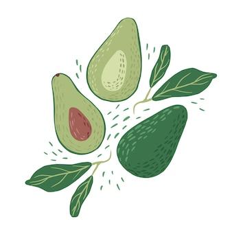 Composizione di avocado e foglie