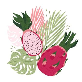 Composizione frutta drago con foglie tropicali su sfondo bianco.