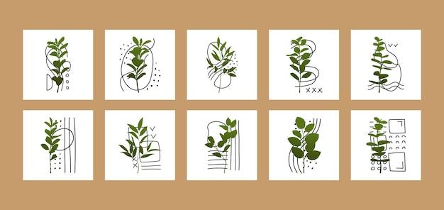 Set collage di arte contemporanea da parete con ramo floreale e forme geometriche astratte