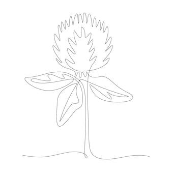 Un disegno a tratteggio continuo di trifoglio rosso, prato vettoriale trifolium pratense. illustrazione in bianco e nero di stile scarabocchio