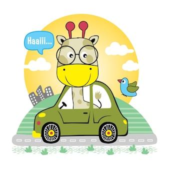 Bella giraffa sulla macchina divertente cartone animato animale