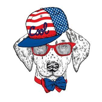 Cane cool hipster in vestiti alla moda.