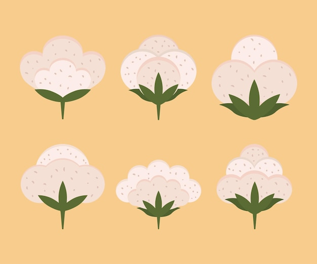 Capsule di cotone organiche