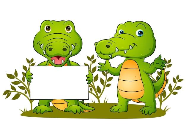 La coppia del simpatico coccodrillo tiene in mano uno striscione bianco