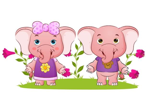 La coppia di elefanti è in piedi e fa l'illustrazione di saluto