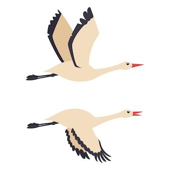 Coppia di cicogne in volo. icone di uccelli piatti isolati su sfondo bianco.