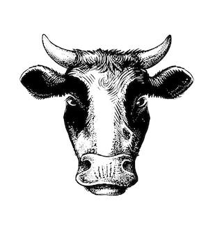 Testa di mucca stile schizzo nero su bianco