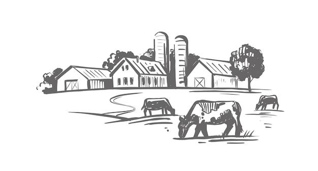 La mucca sta in un villaggio vicino alle case