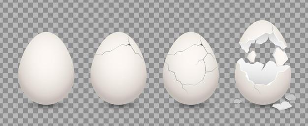 Insieme dell'ingrediente culinario dell'illustrazione dell'uovo incrinato