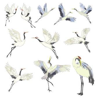 Gru. un uccello in volo. elemento di design.