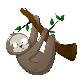 Bradipo pazzo appeso al ramo di un albero con foglie