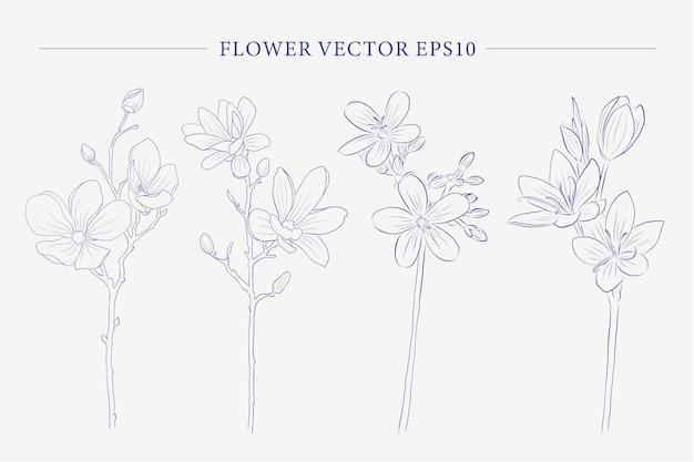 Collezione di fiori creativi