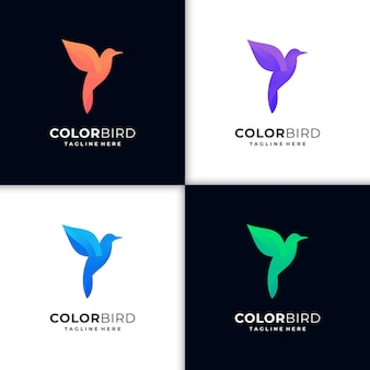 Gradiente di logo colibrì illustrazione creativa
