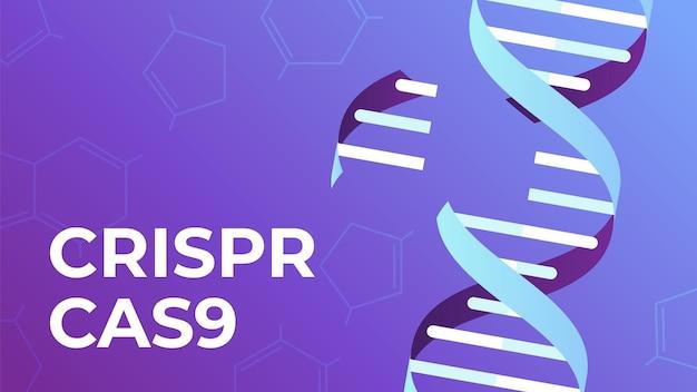 Crispr cas9. strumento di modifica del gene del dna, biotecnologia dei geni e illustrazione dell'ingegneria del genoma umano.