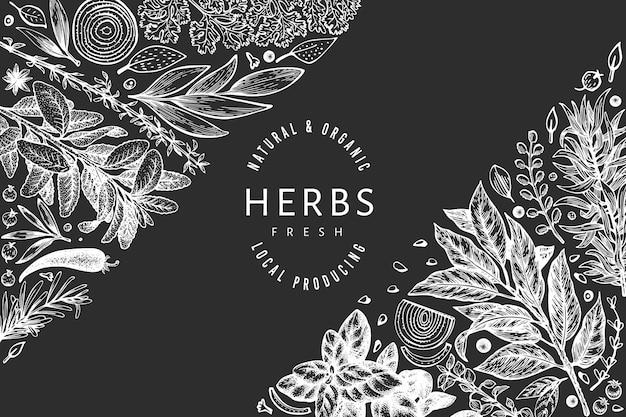 Modello di banner di erbe culinarie. illustrazione botanica dell'annata disegnata a mano sulla lavagna. stile inciso. sfondo di cibo vintage.