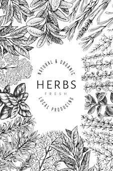 Modello di banner di erbe culinarie. illustrazione botanica vintage disegnata a mano. stile inciso. sfondo di cibo vintage.