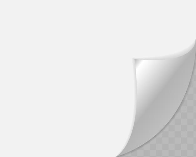 Angolo arricciato di carta su sfondo trasparente con ombre morbide.