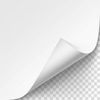 Angolo arricciato di carta bianca