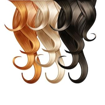 Tavolozza dei capelli ricci su fondo bianco