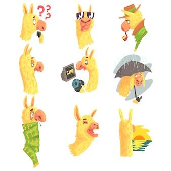 Simpatici personaggi di alpaca in posa in diverse situazioni, illustrazioni colorate di attività diverse di alpaca di cartone animato