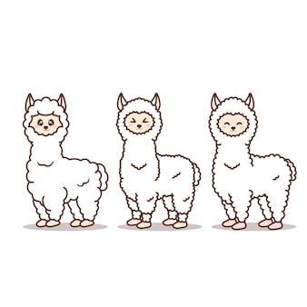 Alpaca carino con espressione diversa