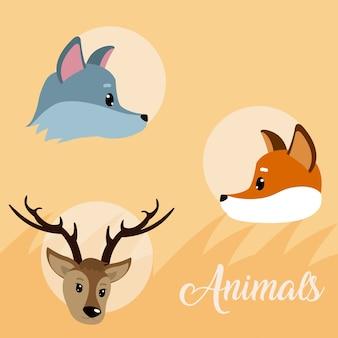 Animali carini intorno cartoni animati icone su sfondo colorato