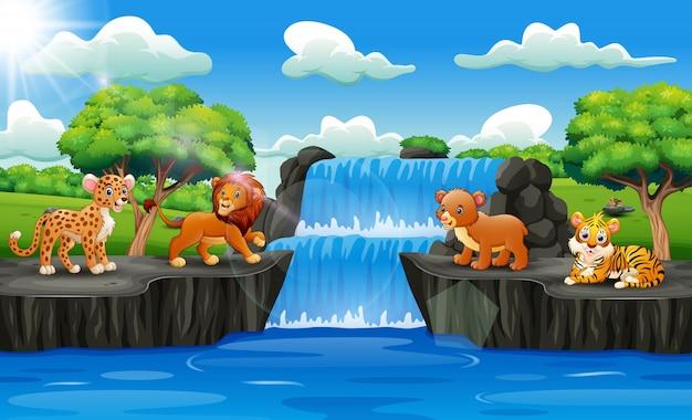 Simpatici animali con paesaggio cascata