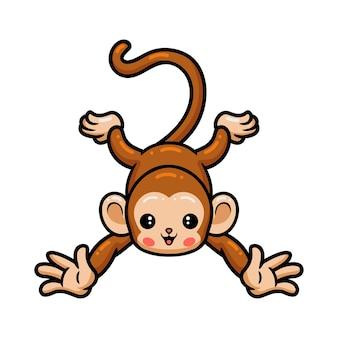 Simpatico cartone animato scimmia in posa Vettore Premium