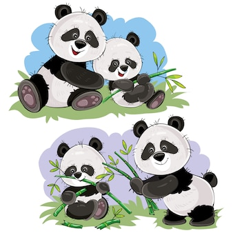 Orso di panda sveglio del bambino e sua madre che giocano sull'erba, mangiando i gambi e le foglie di bambù