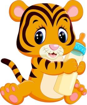 Cute baby tiger holding latte bottiglia