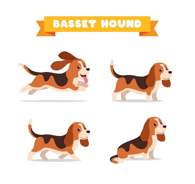 Simpatico animale domestico del cane basset hound con molti set di fasci di pose