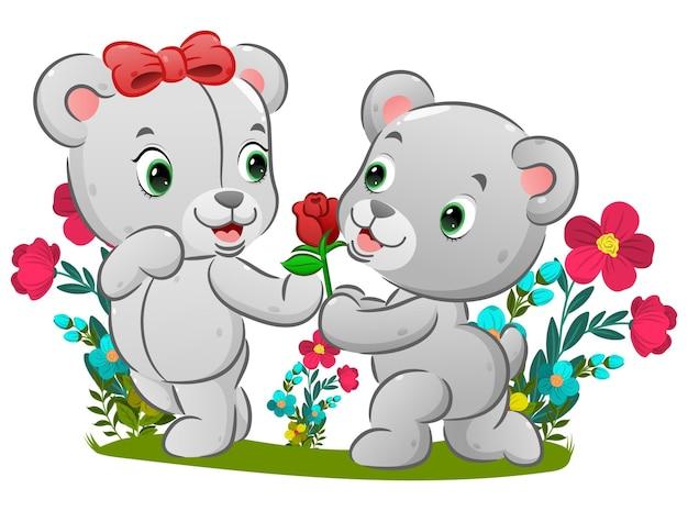 Il simpatico orso è inginocchiato davanti alla sua ragazza e tiene in mano la rosa rossa dell'illustrazione