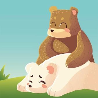 Orso sveglio e orso polare che riposa nell'illustrazione degli animali del fumetto dell'erba