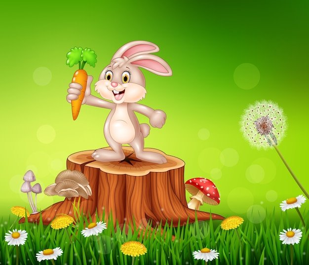 Carota carina tenendo la carota
