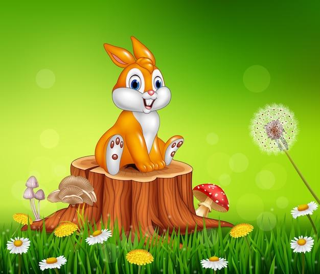 Coniglietto sveglio che si siede sul fondo dell'erba del ceppo di albero