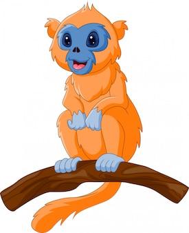 Scimmia di naso snob simpatico cartone animato