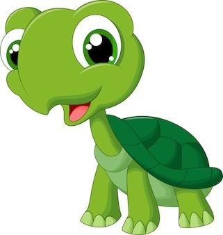 Tartaruga simpatico cartone animato