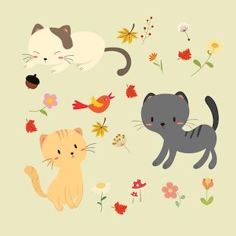 Gatto carino in autunno