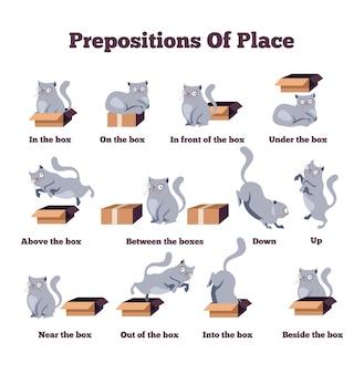 Simpatico personaggio di gatto in diverse pose con scatola preposizioni di luogo studiare inglese del concetto di lingua straniera