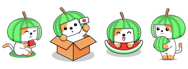 Simpatico disegno di gatto con anguria
