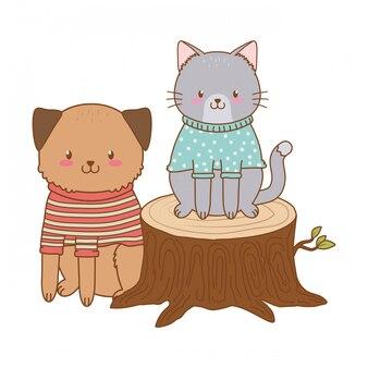 Simpatico gatto con cane nel carattere di tronco boschi